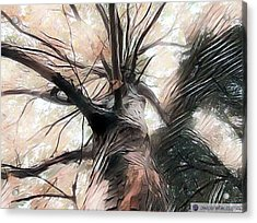 Lookin Up The Tree #digitalart Acrylic Print by Michal Dunaj
