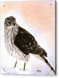 Looking For Breakfast Acrylic Print by Angela Davies