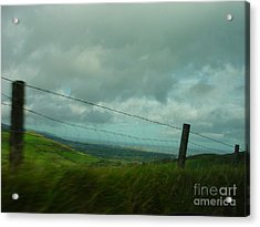Looking For Tralee Acrylic Print by PJ  Cloud
