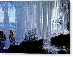 Looking Out #2 Acrylic Print by Sandra Updyke