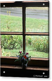 Looking Out Acrylic Print by Carolyn Postelwait