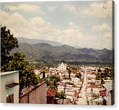 Acrylic Print featuring the photograph Looking Out by Charles McKelroy