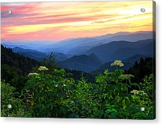 Looking Out Over Woolyback On The Blue Ridge Parkway  Acrylic Print