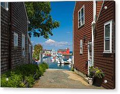 Looking Rockport Acrylic Print