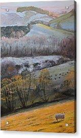 Looking Towards Snowdonia Acrylic Print by Harry Robertson