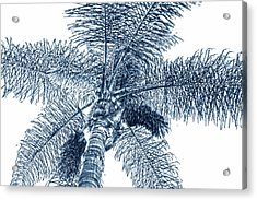 Acrylic Print featuring the photograph Looking Up At Palm Tree Blue by Ben and Raisa Gertsberg