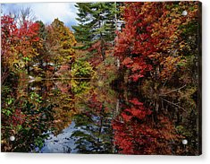 Acrylic Print featuring the photograph Looking Up The Chocorua River by Jeff Folger
