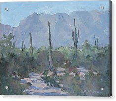 Looking West From Ahwatukee Acrylic Print