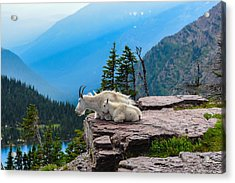 Lookout Ledge Acrylic Print