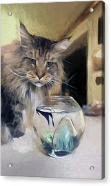 Look's Like Dinner's Just About Ready. Acrylic Print by James Steele
