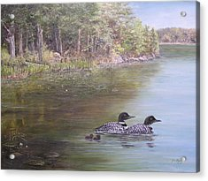 Acrylic Print featuring the painting Loon Family 1 by Jan Byington