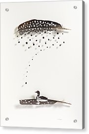 Loon Star Acrylic Print by Chris Maynard
