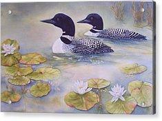 Loons In The Lilies Acrylic Print by Cherry Woodbury