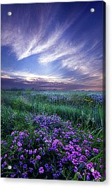 Lord Don't Go Acrylic Print by Phil Koch