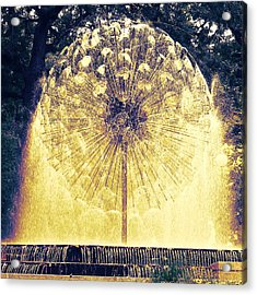Loring Fountain Acrylic Print by Rashelle Brown