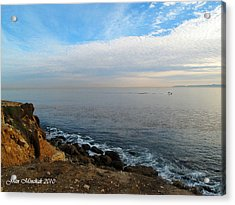 Acrylic Print featuring the photograph Los Angeles Sunset by Joan  Minchak