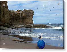 Acrylic Print featuring the photograph Lost And Found by Diane Schuster