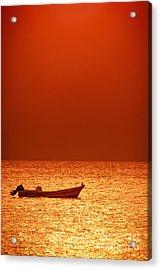 Lost Acrylic Print by Charles Dobbs