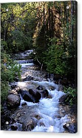 Lost Creek Acrylic Print