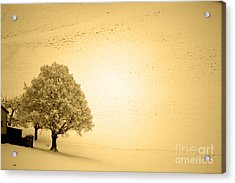 Acrylic Print featuring the photograph Lost In Snow - Winter In Switzerland by Susanne Van Hulst