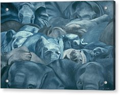 Elephants Lost In The Crowd Acrylic Print