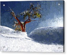 Lost In The Snow Acrylic Print by Alex Galkin