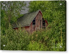 Lost In The Woods Acrylic Print by JRP Photography