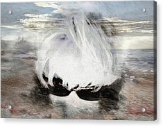 Acrylic Print featuring the photograph Lost In Thought by Pennie  McCracken