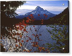 Lost Lake Acrylic Print by Todd Kreuter