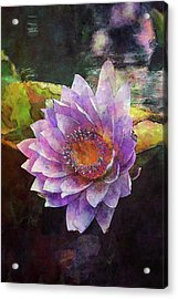 Lost Lavender Lotus Blossom 4725 Ldp_2 Acrylic Print