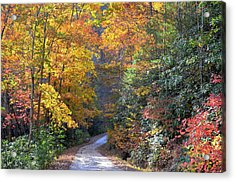 Lost Road Acrylic Print by Bob Jackson
