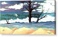 Lost Swan Acrylic Print