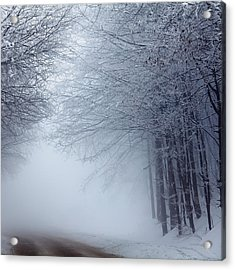Lost Way Acrylic Print by Evgeni Dinev