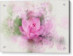 Lotus 7 Acrylic Print