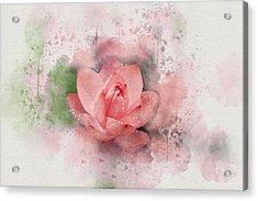 Lotus 8 Acrylic Print