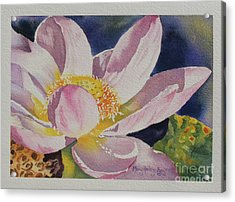 Acrylic Print featuring the painting Lotus Bloom by Mary Haley-Rocks
