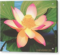 Acrylic Print featuring the painting Lotus Flower by Sophia Schmierer