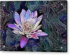 Lotus From The Mud Acrylic Print