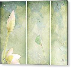 Lotus Garden Acrylic Print