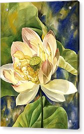 Acrylic Print featuring the painting Lotus In Blooms by Alfred Ng