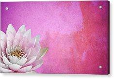 Lotus Acrylic Print by Mark Rogan