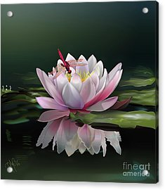 Lotus Meditation Acrylic Print