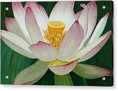 Lotus Of Awakening Acrylic Print by Allan OMarra