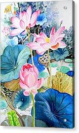 Lotus Pond 3 Acrylic Print