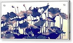 Lotus Tapestry Acrylic Print