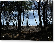 Lough Leane Through The Woods Acrylic Print by Aidan Moran
