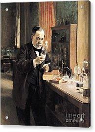 Louis Pasteur Acrylic Print by Albert Gustaf Aristides Edelfelt