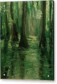 Louisiana Swamp Acrylic Print