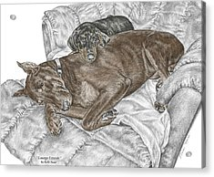 Acrylic Print featuring the drawing Lounge Lizards - Doberman Pinscher Puppy Print Color Tinted by Kelli Swan