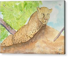 Acrylic Print featuring the painting Lounging Leopard by Vicki  Housel